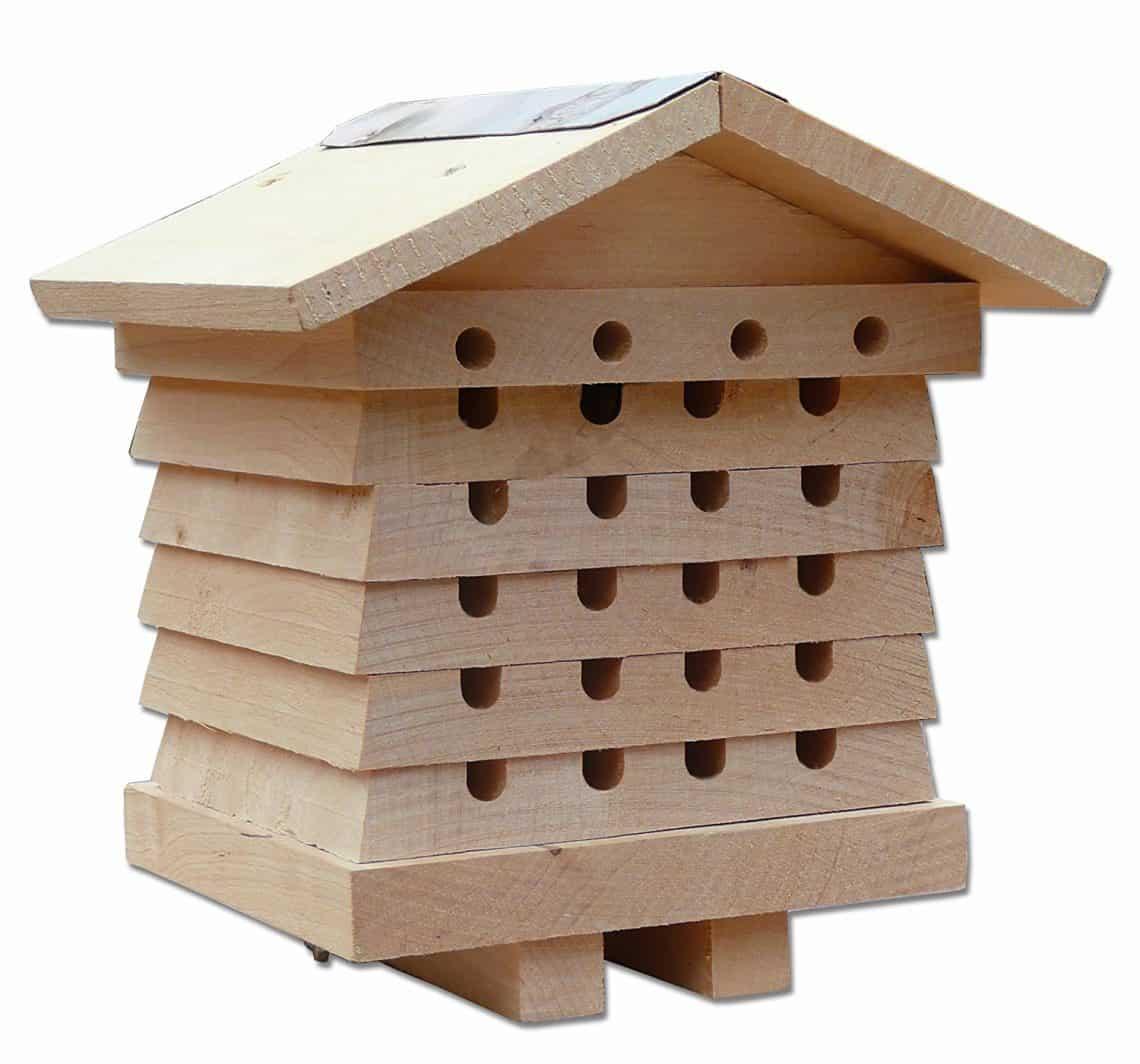 ruche interactive pour abeille solitaire