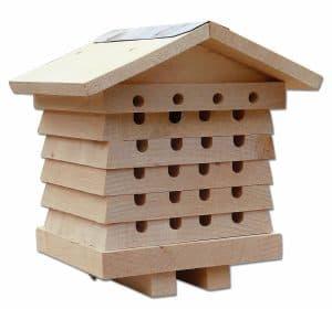 meilleure ruche pour abeille solitaire