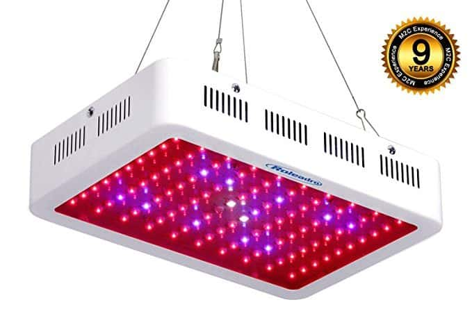 lampe horticole 300 watts