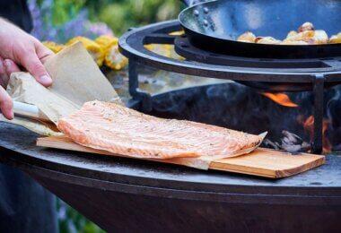 brasero barbecue plancha